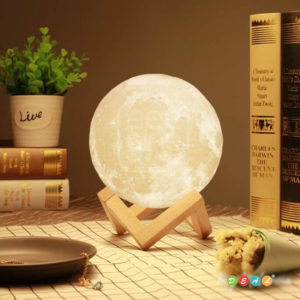 3D MOON LED Lamp - Wooden and hand models