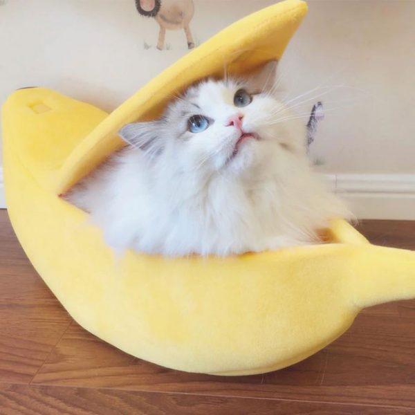 banana-peel-hideaway