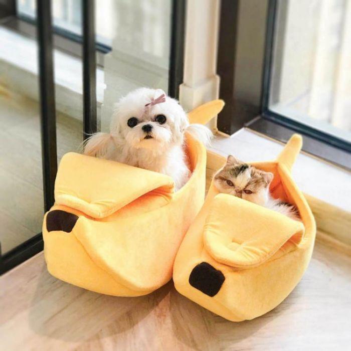 banana cave pet bed